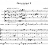 StrQuintett B 1